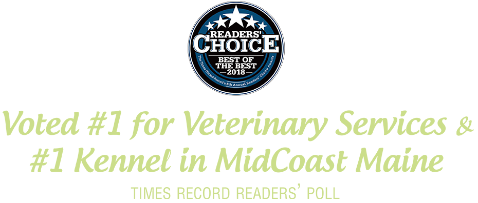 Voted #1 for Veterinary Services & #1 Kennel in MidCoast Maine